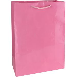 Light Pink Gift Bag