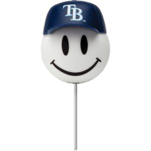 Tampa Bay Rays Antenna Topper
