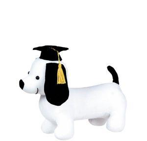 Graduation Autograph Dog