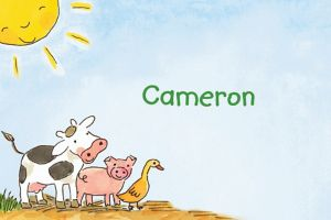 Custom Barnyard Animals Thank You Notes