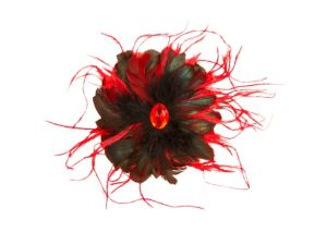 Fire Bird Hair Clip