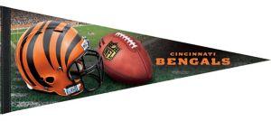 Premium Cincinnati Bengals Pennant Flag