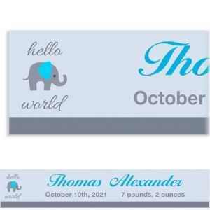 Custom Hello World Boy Banner