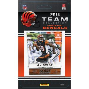 2014 Cincinnati Bengals Team Cards 13ct