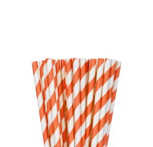 Orange Striped Paper Straws 24ct
