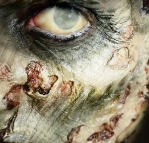 Zombie Cheekbones Prosthetics 2ct