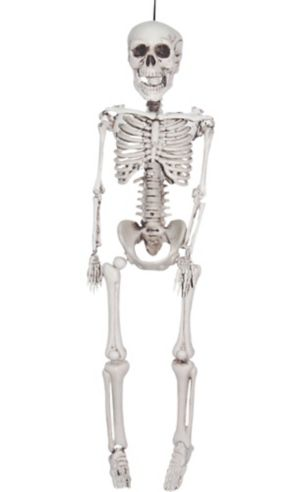 Realistic Hanging Skeleton