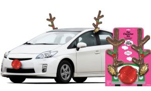Sequin Rudolph Reindeer Car Decorating Kit 3pc