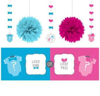 Gender Reveal Decorations Shower Kit