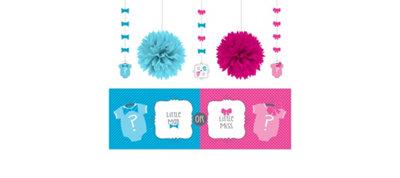 Gender Reveal Decorations Shower Kit