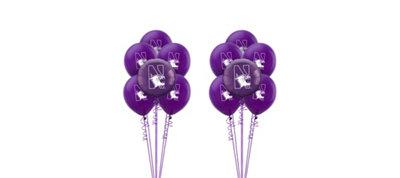 Northwestern Wildcats Balloon Kit