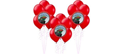 Minnesota Wild Balloon Kit