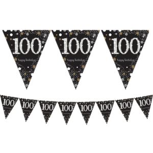 Prismatic 100th Birthday Pennant Banner - Sparkling Celebration