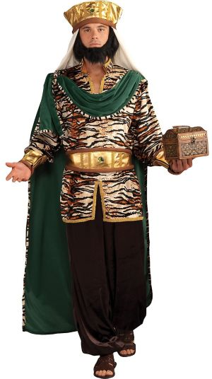 Adult Emerald Wise Man Costume