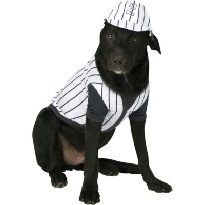 Baseball Player Dog Costume