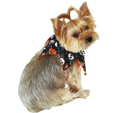 Halloween Dog Jester Collar