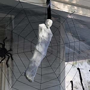 Spider Meal Man Idea