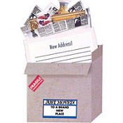 Just Moved New Address Cards 8ct