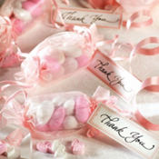 Pink Wrapper Wedding Favor Kit 12ct
