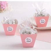 Pink Popcorn Box Baby Shower Favor Kit 25ct