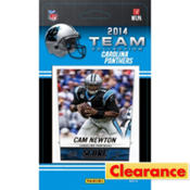 2014 Carolina Panthers Team Cards 13ct