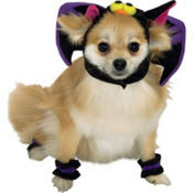 Cute Bat Dog Costume