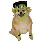 Mini Monster Dog Costume