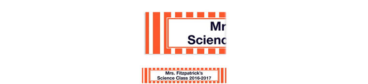 Custom Orange Stripe Banner 6ft