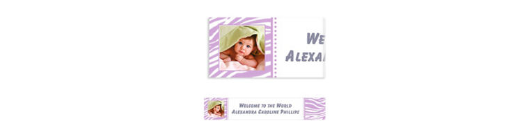 Custom Lavender Zebra Photo Banner 6ft