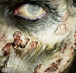 Zombie Cheekbones Prosthetics 2ct