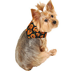 Glitter Pumpkin Print Dog Bandana