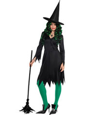 Adult Classic Wicked Witch Costume