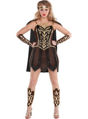 Adult Sexy Warrior Princess Costume