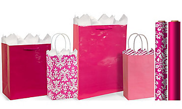 Bright Pink Gift Bags & Wrap