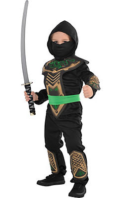 Toddler Boys Dragon Slayer Ninja Costume
