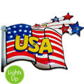 USA Flag Light Up Pin