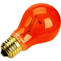 Orange Halloween Light Bulb