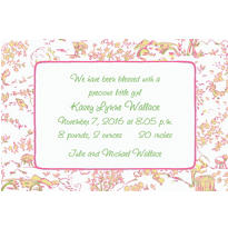 Pink & Green Toile Custom Birth Announcements