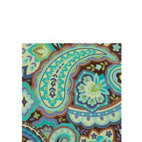 Cool Paisley Beverage Napkins 16ct