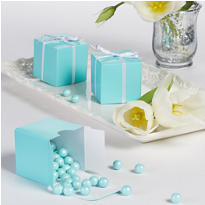 Robin's Egg Blue Wedding Favor Boxes 100ct