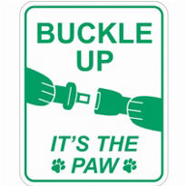 Buckle Up Car Magnet