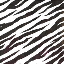 Zebra Printed Tissue Paper 8ct