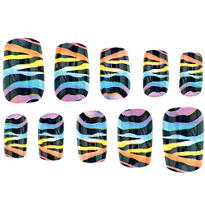 Rainbow Zebra Print Nails
