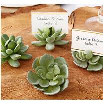 Faux Succulent Place Card Holders