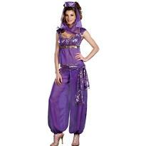 Adult Ally Kazam Costume