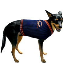 Chicago Bears NFL Dog Sweater