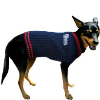 New England Patriots NFL Dog Sweater