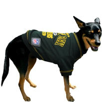 Green Bay Packers NFL Dog T-Shirt