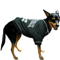 New York Jets NFL Dog T-Shirt