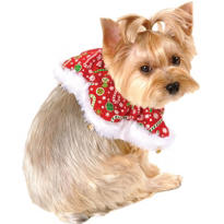 Candy Cane Christmas Dog Collar